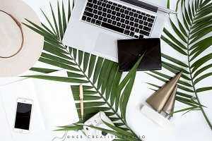 Green Palm Leaf Flatlay