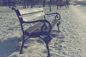 Bench Winter