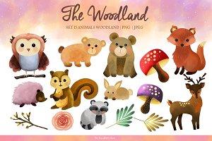 The woodland animals