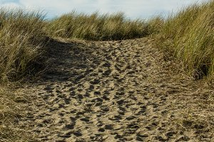 Worn path in the sand over the dune