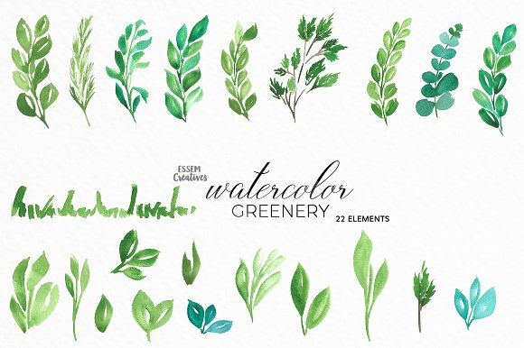 Watercolor Greenery Leaves Clipart Illustrations Creative Market