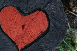 Red Heart on the Wood