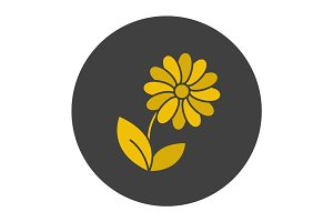Camomile glyph color icon