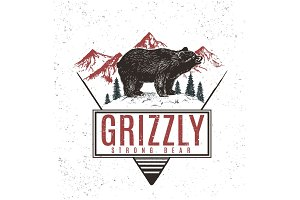 Old retro logo with bear grizzly