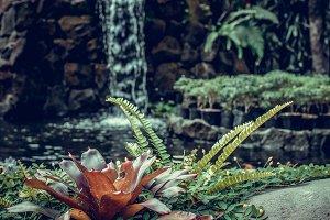Tropical garden waterfall on exotic island Bali, Indonesia.
