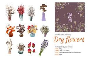 Dry Flowers Set