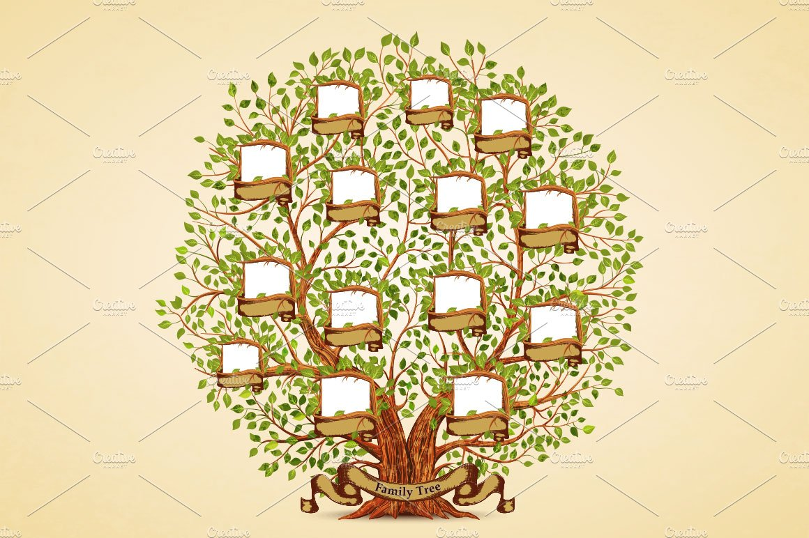Family Tree template ~ Illustrations ~ Creative Market