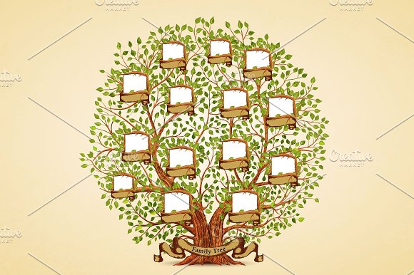 Family Tree Template Illustrations Creative Market