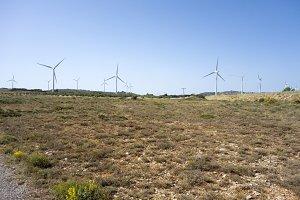 Barracas landscape