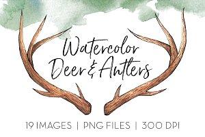 Deer & Antlers Clipart