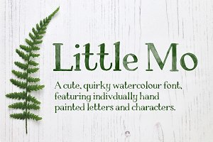 Little Mo Watercolour Display Font