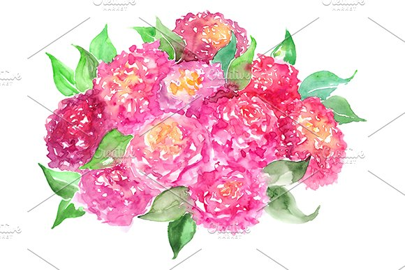 Watercolor Peony Rose Flower Bouquet