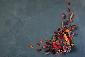 Colorful autumn leaves on a grey stone. Framing  message area, free space, chalk board