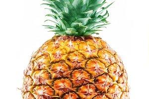 Pineapple plant. Macro shot.
