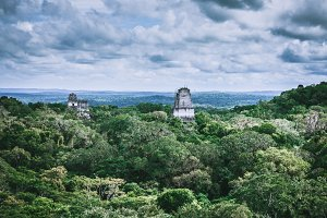 Tikal Mayan Pyramids in the Jungle