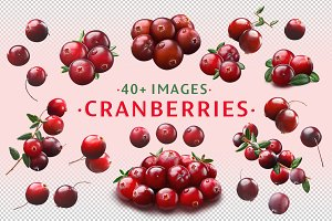 Cranberries—46 images