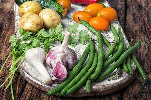 Harvest of summer vegetables