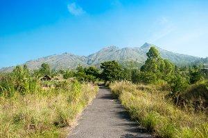Path to the mountain