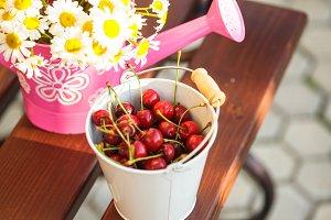 Cherries outdoor
