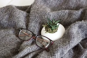 Glasses And Succulent On Blanket