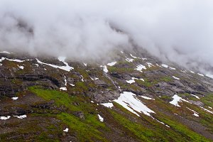Mountain with Snow and Moss