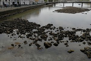Gilao river with stones in Tavira