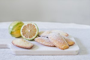 Pink Tiger Lemon Madeleines