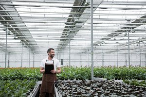Serious man standing in greenhouse near plants holding clipboard.