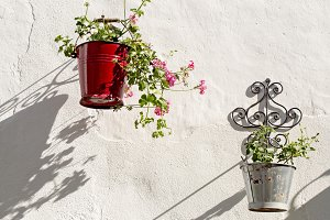 Metal containers with Geraniums