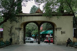 arch in a park