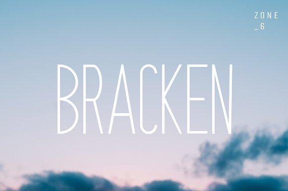 Bracken | A Hipster Font Family