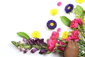 Toddler Hand and Colorful Flowers