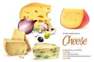 Cheese Realistic Set
