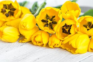 bouquet of yellow tulips on a light wooden background