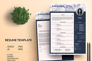 Marble simple CV Resume Template / N