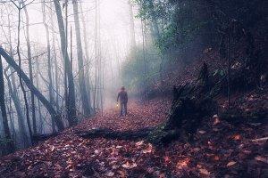Lost way
