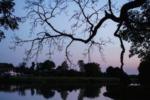 Night lake background
