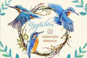 Kingfishers Watercolor Clip Arts -10