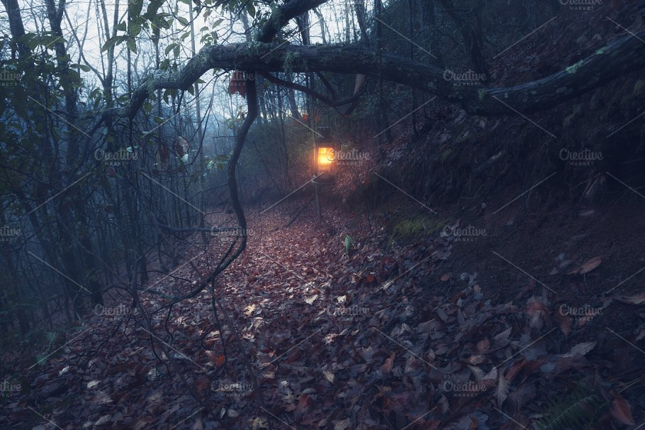park photo photography search misty lamp autumn fotosearch of stock forest street in