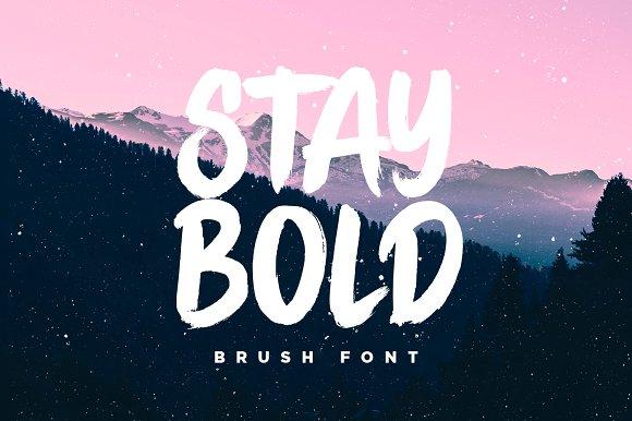 stay bold brush font display fonts creative market