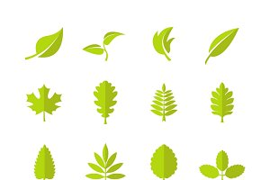 Green leaves vector icons
