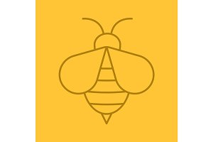Honey bee color linear icon