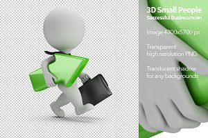 3D Small People - Successful