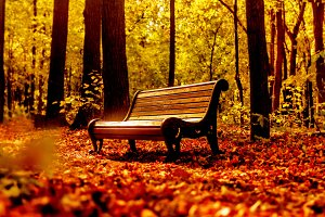 Moments of fall