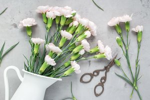 Small tender pink carnation flowers in enamel vase on gray concrete, horizontal, flat lay