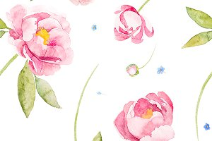 peony rose and forget-me-not flowers