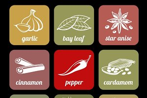 Herbs and spices vector icons