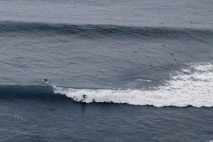 Surfers Fight