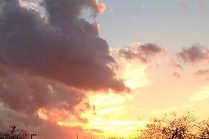 Miami Sunset Nature Photo