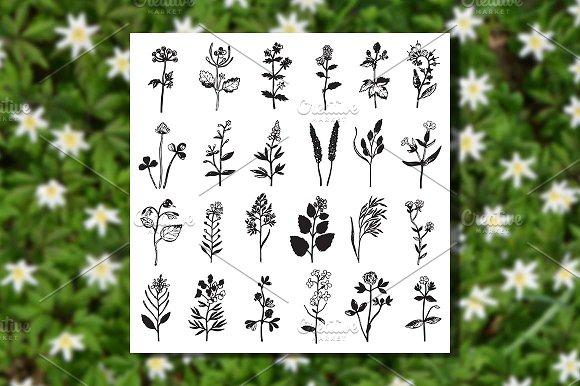 Herbal Set 2 Seamless Patterns